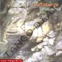 Narcotango-T-CD-017-cover1